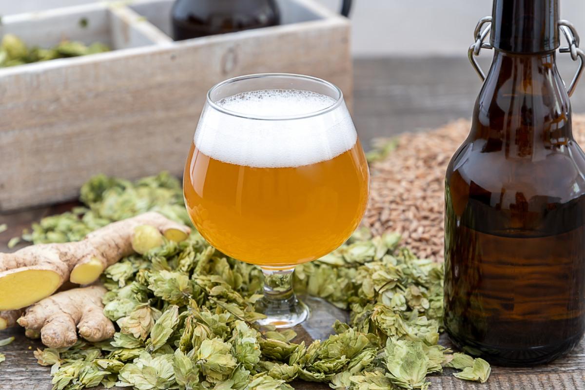 Как начать варить пиво дома?